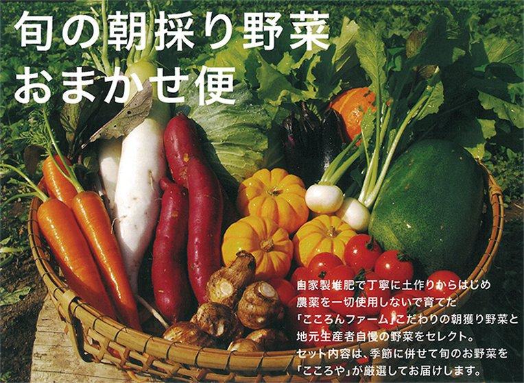 野菜・卵・フルーツ