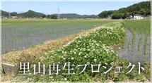 里山再生プロジェクト